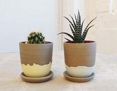 Cactus pot ceramic planter small plant pot plant pot