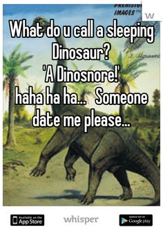 What do u call a sleeping Dinosaur? 'A Dinosnore! Funny Shit, Funny Pics, Funny Quotes, Funny Pictures, Hilarious, Kid Jokes, Jokes For Kids, Laugh A Lot, Laugh Out Loud
