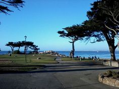 Beautiful scenery @ Lover's Point Park Pacific Grove, CA