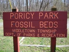 Late Cretaceous fossils - Poricy Park Fossil Beds, Middletown, NJ