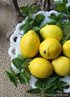 The Simplest Centerpiece: Lemons + Mint  @emilyaclark