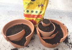Mini jardin de fées avec un pot de fleur cassé                                                                                                                                                                                 Plus
