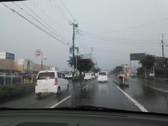 7月26日 雨 物凄い豪雨でした。 梅雨に逆戻り見たいな一日でした。