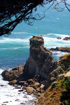pictures of sonoma county ca | Sonoma Coast, Timber Cove, CA
