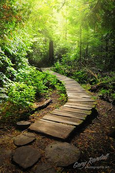 ˚A Peaceful Pathway Cape Flattery at the Strait of Juan de Fuca - Olympic Peninsula, Washington