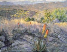 Winter Aloes  by Karin Daymond