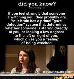 If you feel strongly that someone is watching you, they probably are. Wierd Facts, Wow Facts, Wtf Fun Facts, True Facts, Funny Facts, Random Facts, Strange Facts, Real Facts, Random Things