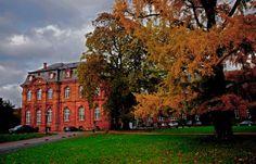 Alte Bäume und Gebäude, ...  kann man bei uns in Mettlach seh`n, nun, vielleicht nicht gerade heute, denn das Wetter ist nicht schön. :-)
