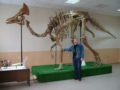 "OLOROTITAN: Greek for ""giant swan"" 