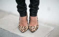 leopard shoes  leopard heels