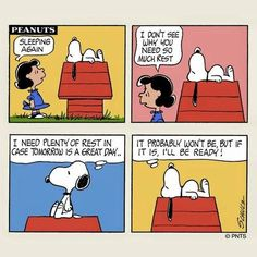 Nog 10 ideeën voor je bord Snoopy & Woodstock - monepoon@gmail.com - Gmail