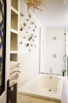 17 Bathrooms That Prove the Shower Plant Trend is Here to Stay | Curbly