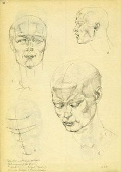 Our goal is to keep old friends, ex-classmates, neighbors and colleagues in touch. Drawing Heads, Anatomy Sketches, Drawing Studies, Anatomy Study, Drawings, Face, Sketches, The Face, Drawing Faces