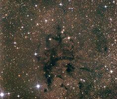 A dark nebula complex