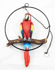Ebros Patio Home Garden Hanging Scarlet Macaw Parrot Perching on Branch in Metal Round Ring Figurine Sculpture Nature Lovers Tropical Bird Collectors Decor H Tropical Art, Tropical Birds, Tropical Paradise, Parrot Perch, Carved Wood Wall Art, Bird Statues, Ceramics Projects, Patio Umbrellas, Hanging Art