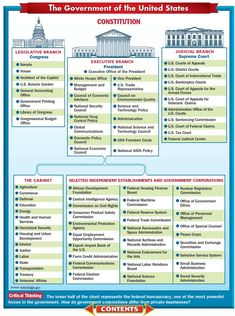 Organizational Chart flow chart of the us government 24424892983 – Flow Chart of the Us White Office Departments, with 38 More files Government Lessons, Teaching Government, Us Government, 3 Branches Of Government, Teaching Economics, Us History, History Facts, American History, Political Science