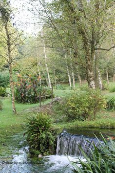 Giardino di Ninfa - cascatelle