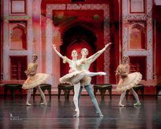 Marianela Nunez, Vadim Muntagirov and soloists of the Kremlin Ballet in La Bayadere Grand pas d'action Kremlin Palace, Royal Ballet School, Ballet Photos, Dance Photos, Dance Awards, La Bayadere, Svetlana Zakharova, Female Dancers, Ballet Dancers