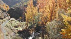 Dilar, in the area of Granada, Granada Province, Spain