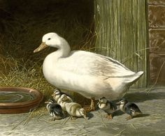 https://flic.kr/p/sWqFQM | Duck and Ducklings | Duck and Ducklings print engraved by J Harrios from an original painting by JF Herring Senior. Published by Messrs. Fores in 1854.  HMCMS:FA2010.560