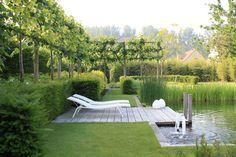 Garden design by Rik Hiergens Pool Water Features, Water Features In The Garden, Landscape Architecture, Landscape Design, Contemporary Garden Design, Contemporary Landscape, Natural Swimming Pools, Design Jardin, Garden Spaces