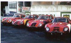 1965-66 Alfa Romeo TZ 2 - AutoDelta line up for the 1966 Targa Florio.-