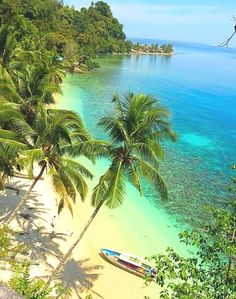 tropicaldestinations:  Tropical beaches on the Maluku Islands, Indonesia (by Chuy Norris)