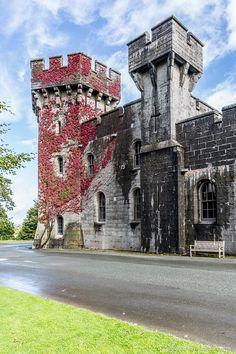 Autumn leaves at Penrhyn Castle in Wales