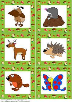 Erdei Állatok flashcards 2