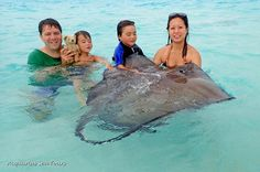 Yup!! Even Teddy made it to Stingray City in Grand Cayman today. Awesome!!!