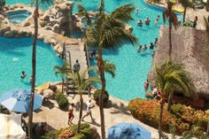 Occidental Grand Aruba: Love the swim up pool bar