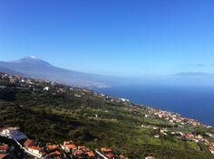 Real inmobiliarias Tenerife