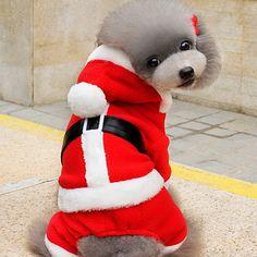 Gato Perro Disfraces Saco y Capucha Ropa para Perro Bonito Navidad Sólido Rojo Disfraz Para mascotas 2017 - $202.17