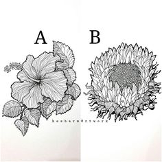 Which one do you like more..'A or B'
