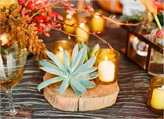 sliced wood with succulent for holiday table decor