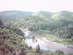 Encuentran a hombre sin vida en río de Nonoava; Cayó de puente peatonal al intentar cruzar el río   El Puntero