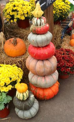 Pumpkin Stax!! Beautiful, creative Fall Decor perfect for any home