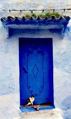 blue door with cat - Chefchaouen, Morocco door - Morocco Travel Inspiration Grand Entrance, Entrance Doors, Doorway, Cool Doors, Unique Doors, Stil Inspiration, Travel Inspiration, When One Door Closes, Door Gate