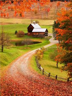 My dream!! Farm with a winding dirt driveway and a pond