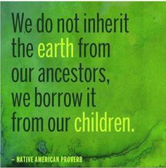 We do not inherit the earth from our ancestors, we borrow it from our children. ~Native American Proverb