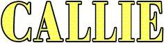 Yellow Brick Road Alphabet Download