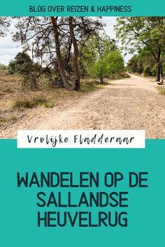 Wandelen en fietsen op de Sallandse Heuvelrug: dit Nationaal Park is schitterend <3 Wij kozen de gele wandelroute naar de Holterberg voor prachtig uitzicht (maar dit is slechts een van de vele wandelroutes) en een fietsroute rondom het natuurgebied. De regio Twente en Salland zijn een aanrader! Meer tips en foto's van ons verblijf (én leuk vakantiehuisje!) lees je in de blog #VrolijkeFladderaarWasHere @pinjeplek #Nederland #Netherlands #vakantie