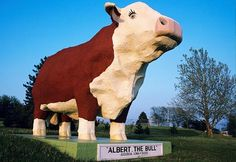 Albert the Bull holds the title as the world's largest bull statue and is Audubon, Iowa's, tribute to its cattle-industry heritage. The 30-foot-tall, 45-ton concrete statue of a Hereford has a horn span of 15 feet and is lighted at night, welcoming travelers passing by.