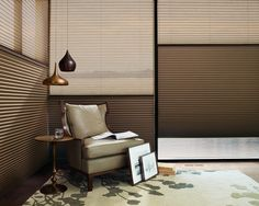 Visually stunning, shades that are as versatile as you need them to be.  Alustra® Duette®  Architella® Duolite™ honeycomb shades ♦ Hunter Douglas window treatments   #LivingRoom   #Art