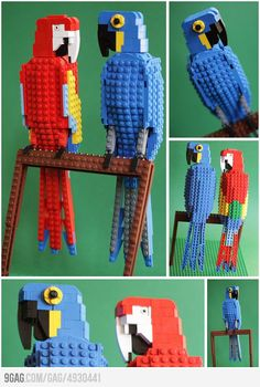 For the boy : Tropical LEGO Birds