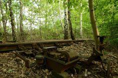 Natur-Park Südgelände