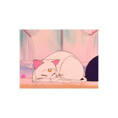 she didn't bury the body ❤ liked on Polyvore featuring anime, pictures, backgrounds, sailor moon and photos