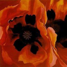 200+ Oriental Poppy Orange Flower Seeds , Under The Sun Seeds