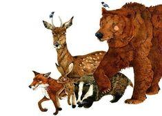 Print Bear and woodland Creatures, Fox, Deer, Hare, Badger art Print 8x11. £13.00, via Etsy.