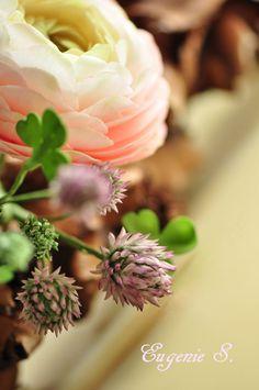 Kleeblüten/Clover Blossoms aus Zucker von Eugenie S.